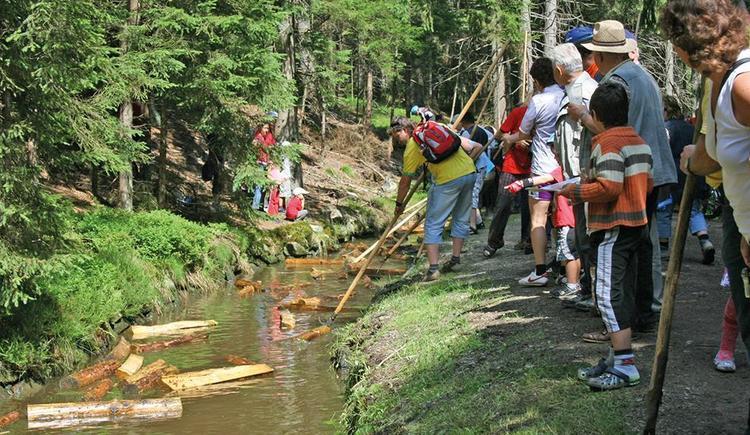 Schwemme beim Iglbach (© Ferienregion Böhmerwald)