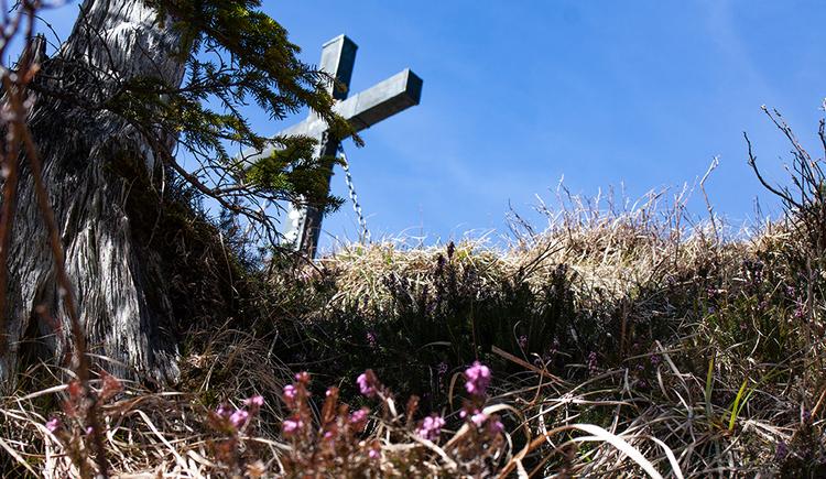 Gipfelkreuz am Almkogel mit Erika (© © TVB Mondsee-Irrsee)