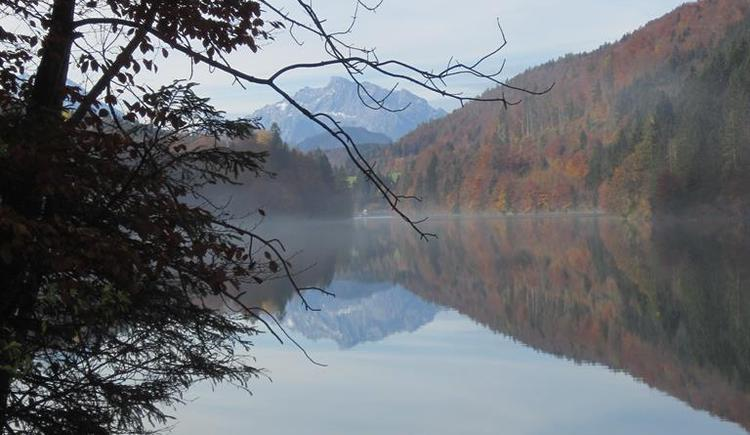 Herbst (© Hölzl)