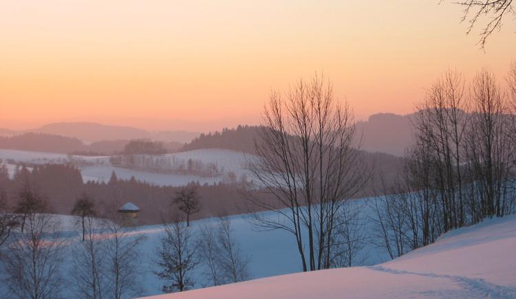 Landschaft um St. Oswald bei Haslach (© Schwarzmann)