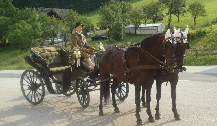 Horse-drawn carriage rides - Fam. Ausger in Faistenau (© Familie Ausweger Faistenau)