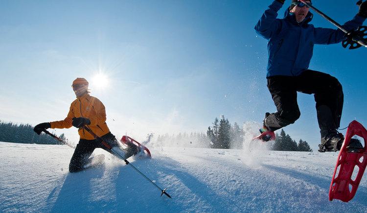 Spaß beim Winterwandern und Schneeschuhwandern (© Tourismusverband Mühlviertler Kernland/Erber)