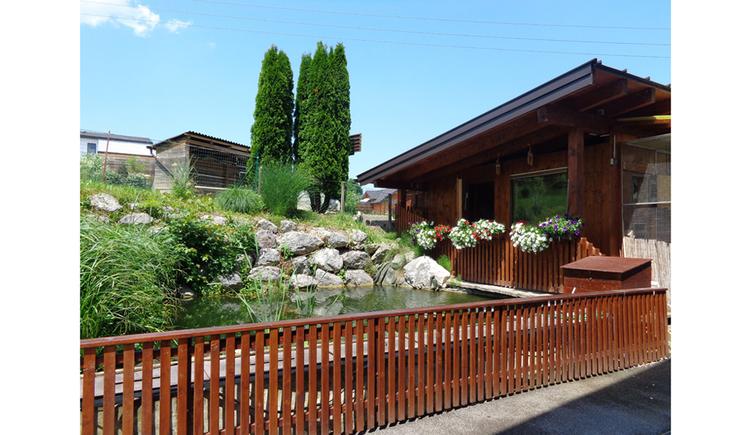 im Vordergrund ein Zaun, dahinter Teich mit Pflanzen, seitlich ein Haus, im Hintergrund Bäume, Schuppen
