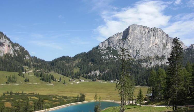 Wurzeralm in Spital am Pyhrn in Oberösterreich (© Bürtlmair)