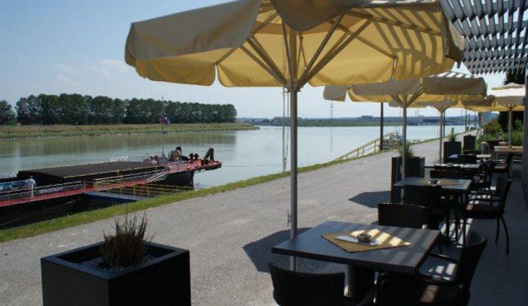 Bei der Mündung Enns-Donau