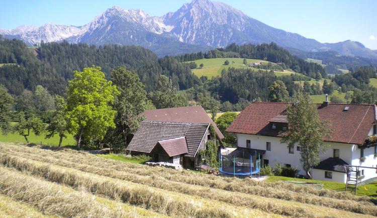 Gasthof-Pension Moosgierler von hinten (© Moosgierler)