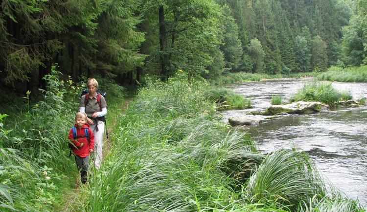 Wandern entlang der Steinernen Mühl auf dem Naturerlebnisweg in Haslach. (© Schwarzmann)