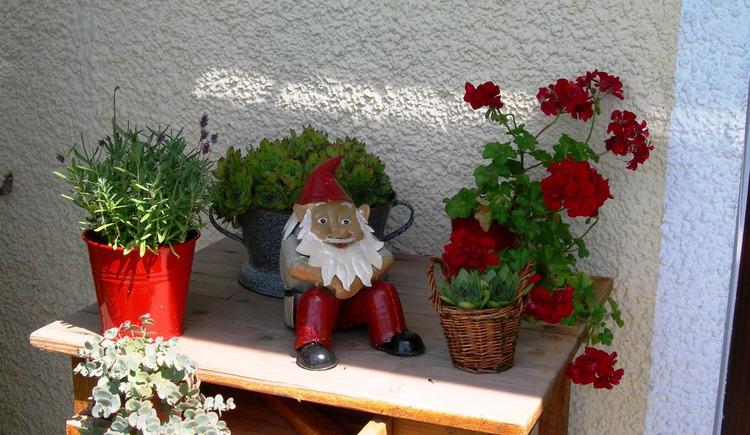 Blumen (© Josef Scheichl)