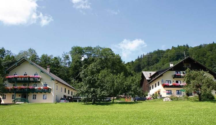 Blick auf die Seepension Steiningerhof. (© www.mondsee.at)
