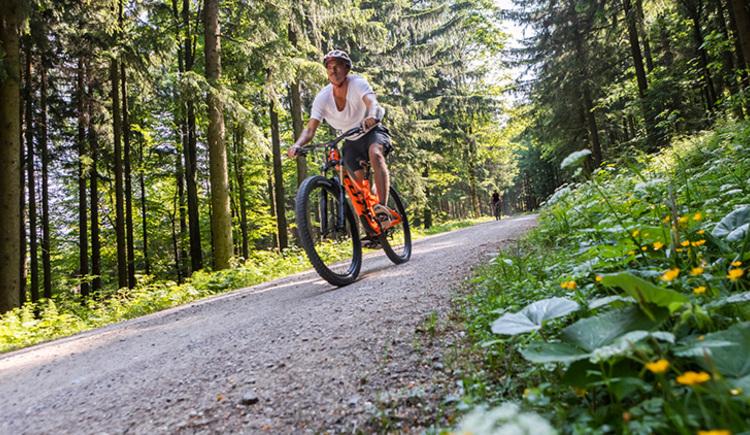 Mountainbikerunde Saurüssel (© TVB Mondsee-Irrsee_Valentin Weinhäupl)