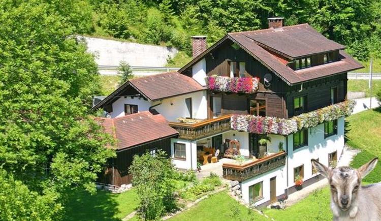 Unser Haus im Sommer (© Roithner)