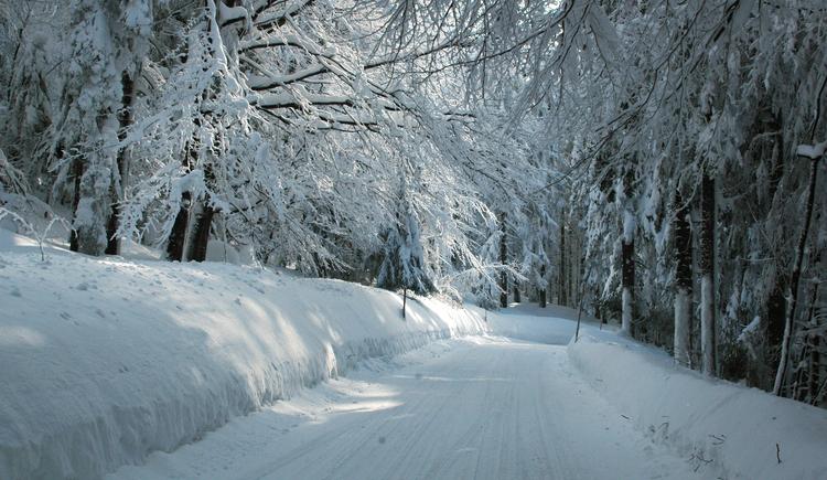 Winterwanderweg (© TV Pfarrkirchedn)