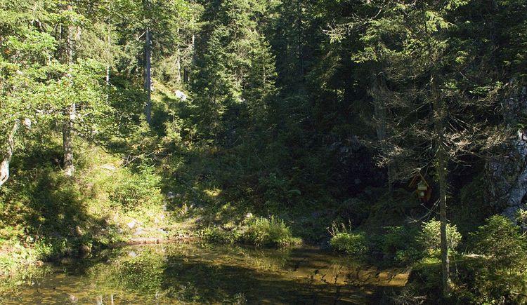 kleiner Teich in der Höll (© TVB Pyhrn-Priel/Sulzbacher)
