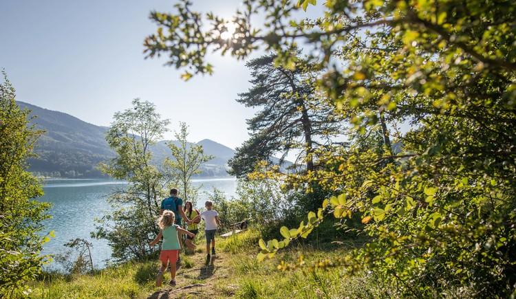 Familie wandert am Fuschlsee 3 (c)Fuschlseeregion-Groessinger (© (c)Fuschlseeregion-Groessinger)