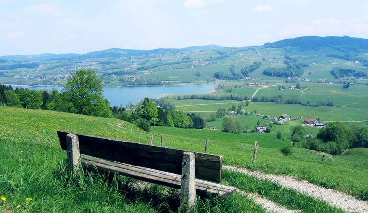 Blick vom Bankerl auf die Landschaft, im Hintergrund der See und die Berge. (© Tourismusverband MondSeeLand)