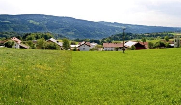 Panorama Krottenthal (© WGD Weissenbrunner / WGD Donau Oberösterreich Tourismus GmbH)