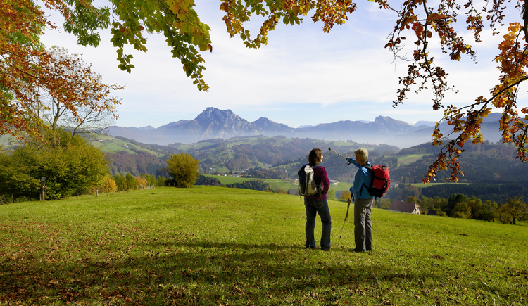 Ausblick auf den Traunstein (© MTV Ferienregion Traunsee)