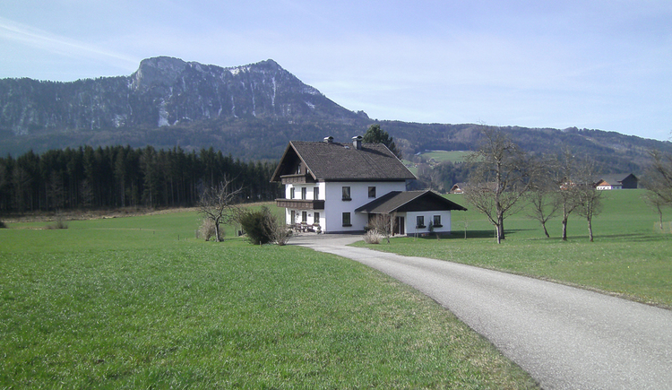 View of the house, surrounded by meadows, in the background the snowy mountains