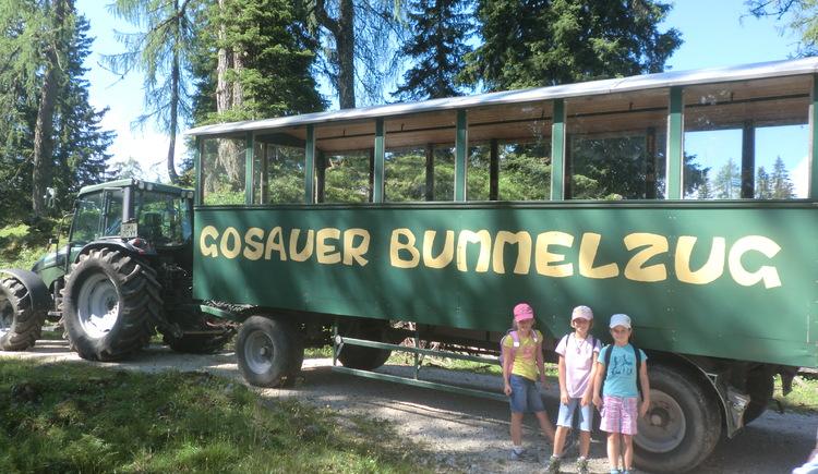 Der Gosauer Bummelzug bringt einem über die Forststraße zur Plankensteinalm. (© Ebenlechner Petra)