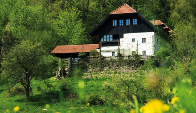 Scherleiten Restaurant mit Weitblick. (© Zur Verfügung gestellt von Familie Otte)