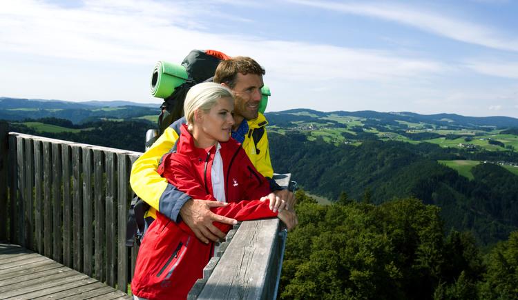 Wandern am Donausteig, Aussichtsturm Burgstall bei Kirchberg.