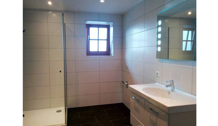 bathroom with shower, sink, mirror, window in the background