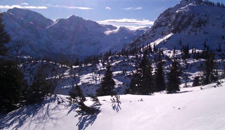 Blick auf das Tote Gebirge. (© WALDNESS by Wald und Berg)