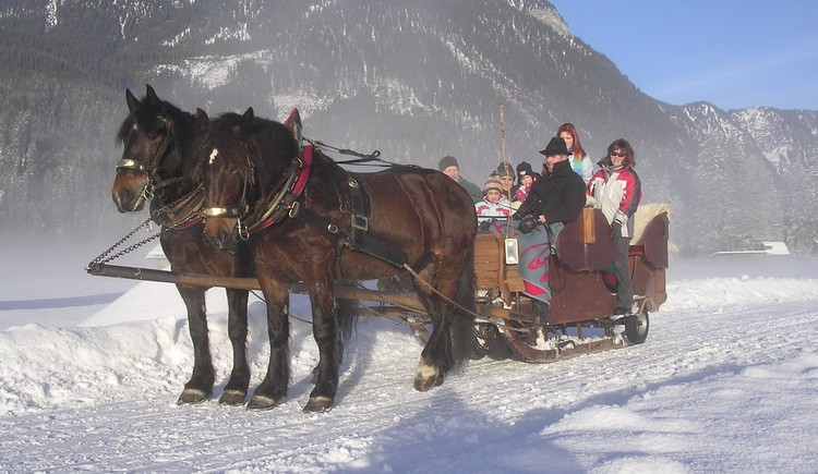 Riding through the winter landscape of Gosau at Dachstein on a horse-drawn sleigh - that is pure romance. (© Grill Elisabeth)