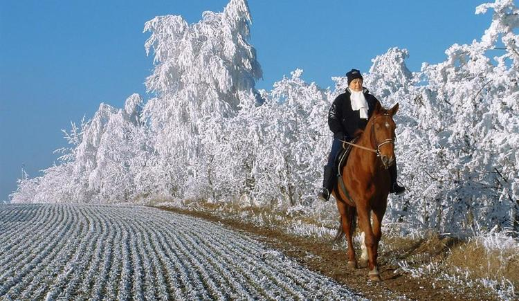 Winterausritt (© Fam Stöglehner)