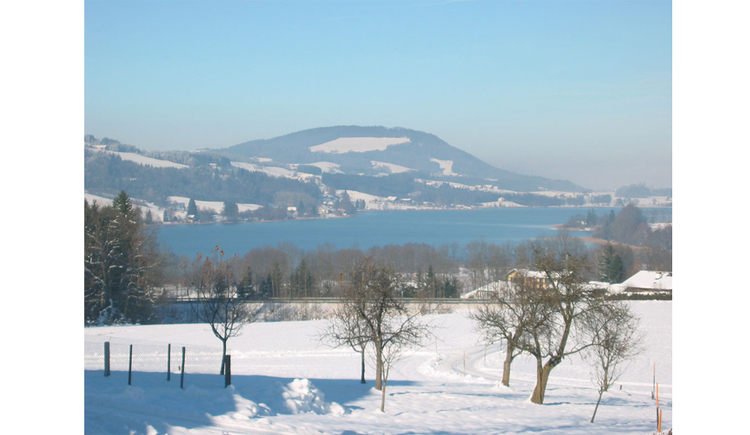 verschneite Landschaft mit Blick auf den See, im Hintergrund die Berge. (© Winter)