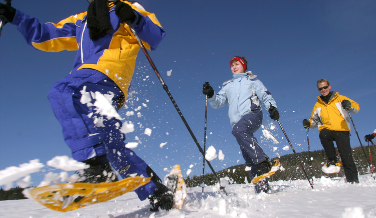 Schneeschuhwandern (© OÖ Tourismus / Weissenbrunner)