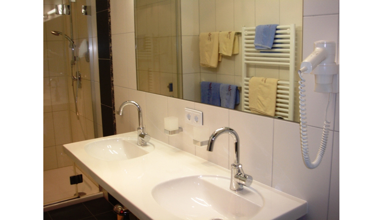 Double washbasin, mirror, hair dryer, shower cubicle