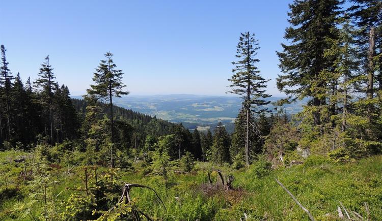 Aussicht vom Rastplatz (© Ferienregion Böhmerwald)