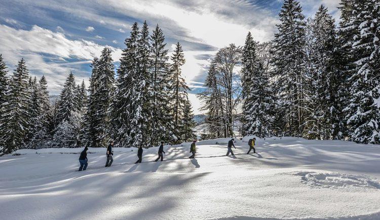 Schneeschuhwanderung. (© Rudi Vonach)