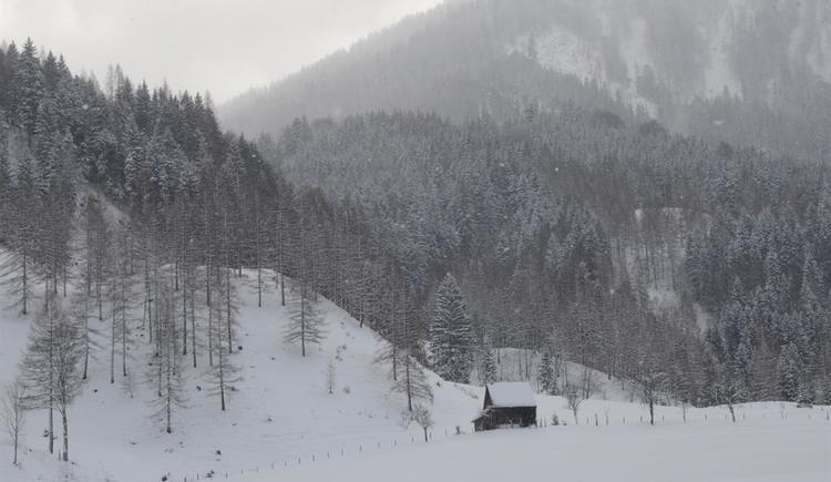 Winter im Tal (© wrener mair)