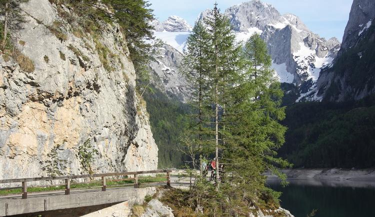 4,2 km lang ist der bequeme Weg Rund um den Vorderen Gosausee. (© Elisabeth Grill)