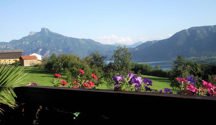 Aussicht vom Balkon auf die Wiesen/Bäume, dahinter der See und die Berge