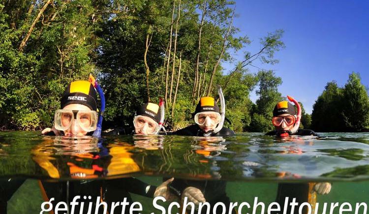 schnorchel 1 (© Gregor Bockmüller)