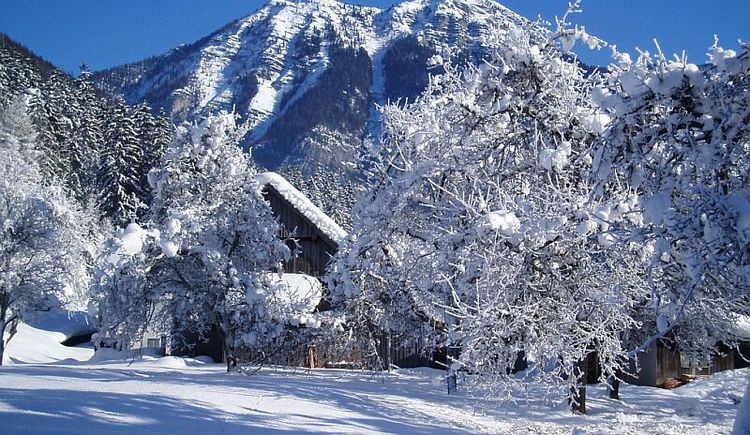 beautiful view of the winter with mountain in the background