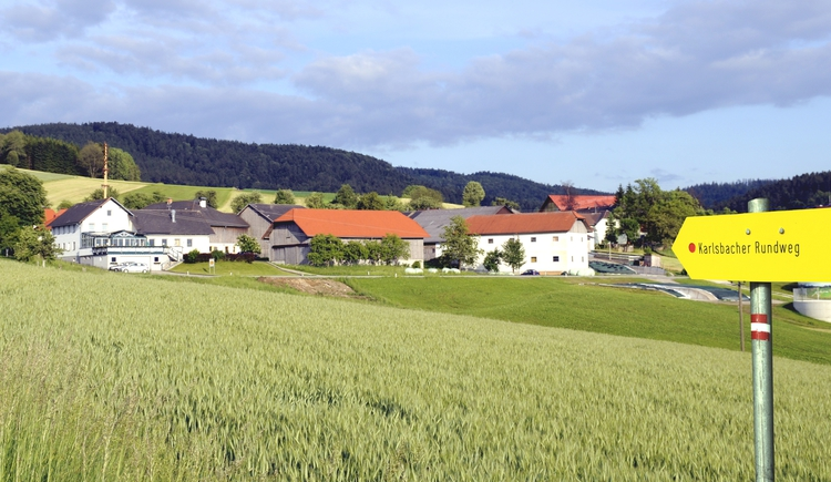 Karlsbacher Rundweg (© Lindorfer)