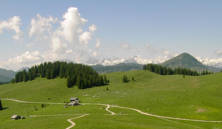 Wiesleralm mit Blick auf das Tennengebirge (© Gisbert Rabeder)