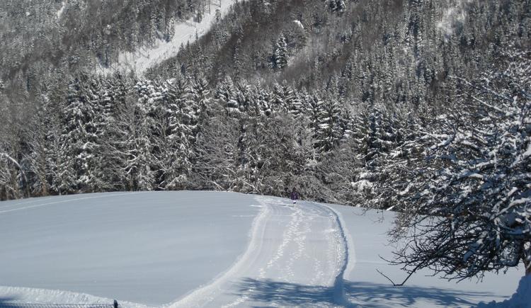 Wandern durch die tiefverschneite Winterlandschaft von Faistenau (© Tourismusverband Faistenau)