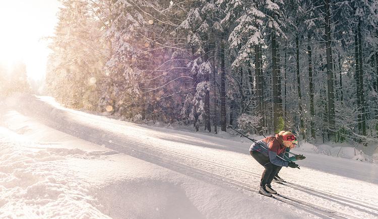 Zwei Langläufer im Nordischen Zentrum Böhmerwald beim Langlaufen. (© OÖ Tourismus David Lugmayr)