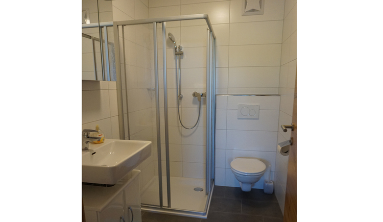 Bathroom with washbasin, shower and toilet