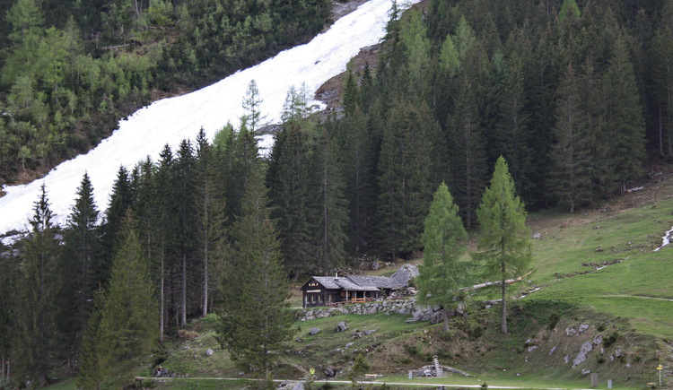 Seeklausalm directly on the Vorderen Gosausee. (© Elisabeth Grill)