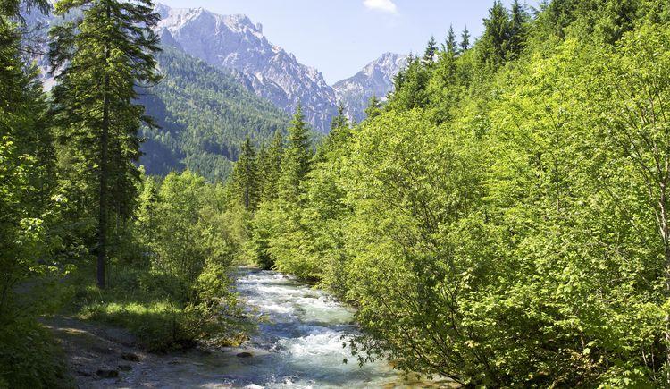 Steyr Fluss