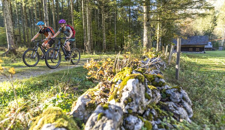 Mountainbiking through the forest of the Salzkammergut lands. (© © WOM Medien GmbH Andreas Meyer)