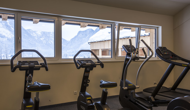 fitness room with view on the snow covered mountains