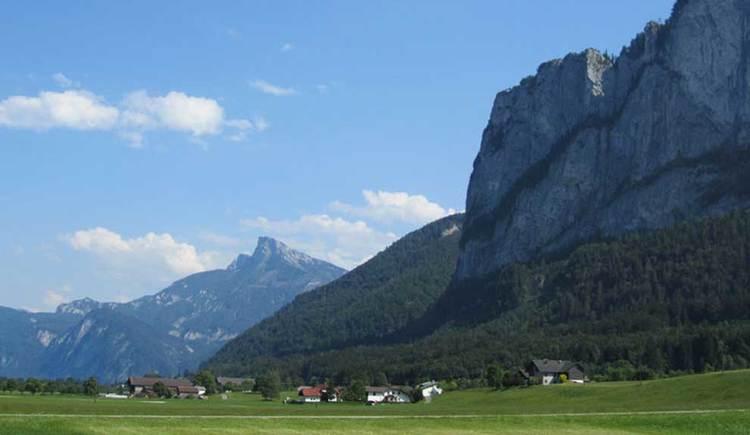 Blick auf die Berge, im Vordergrund eine Wiese. (© www.mondsee.at)