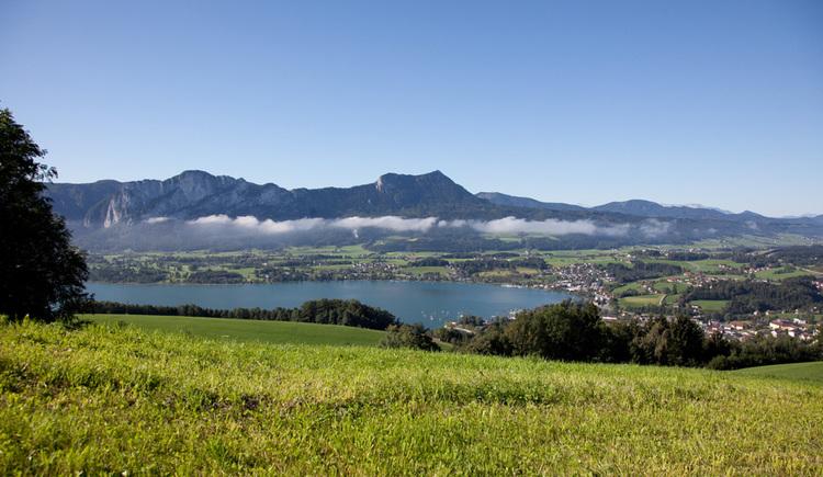 Ausblick von der Wiese auf den See, Berge und die Landschaft